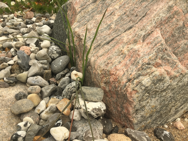 mellem sten
