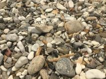 bare sten