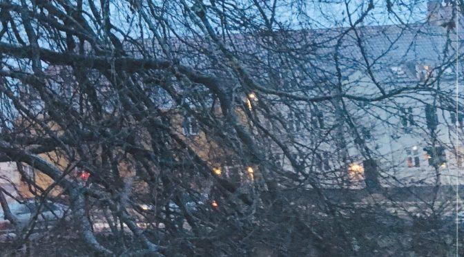 Det er Vinter
