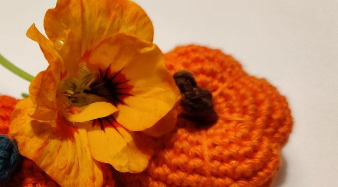 Efterår i græskar-farver