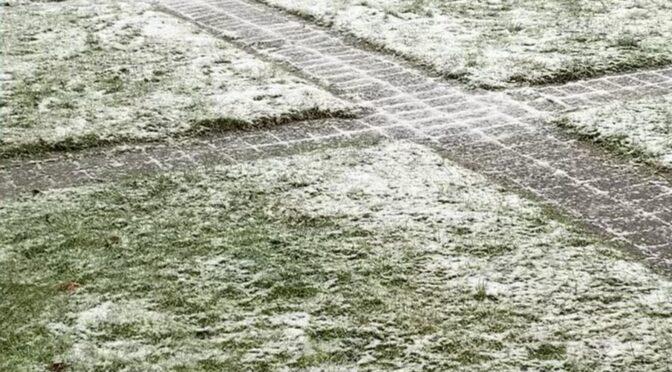 Pause i snevejr